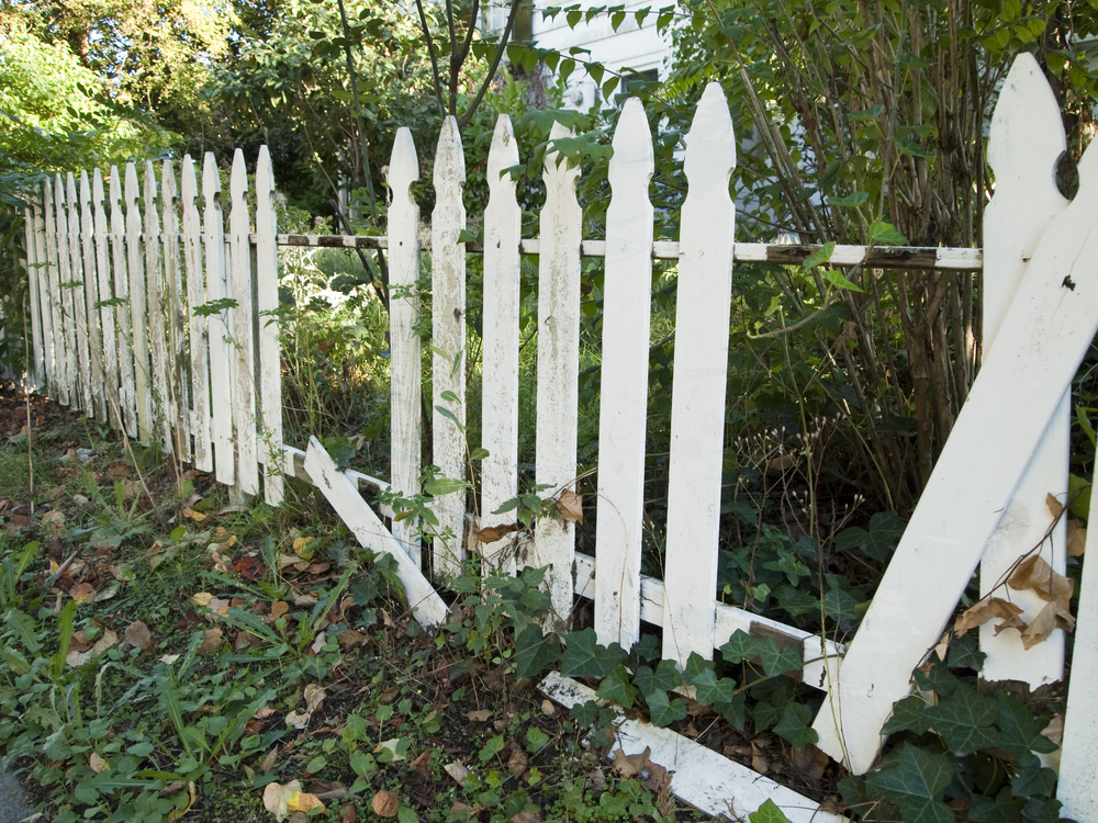 4 indicators that your wood fence needs replacing