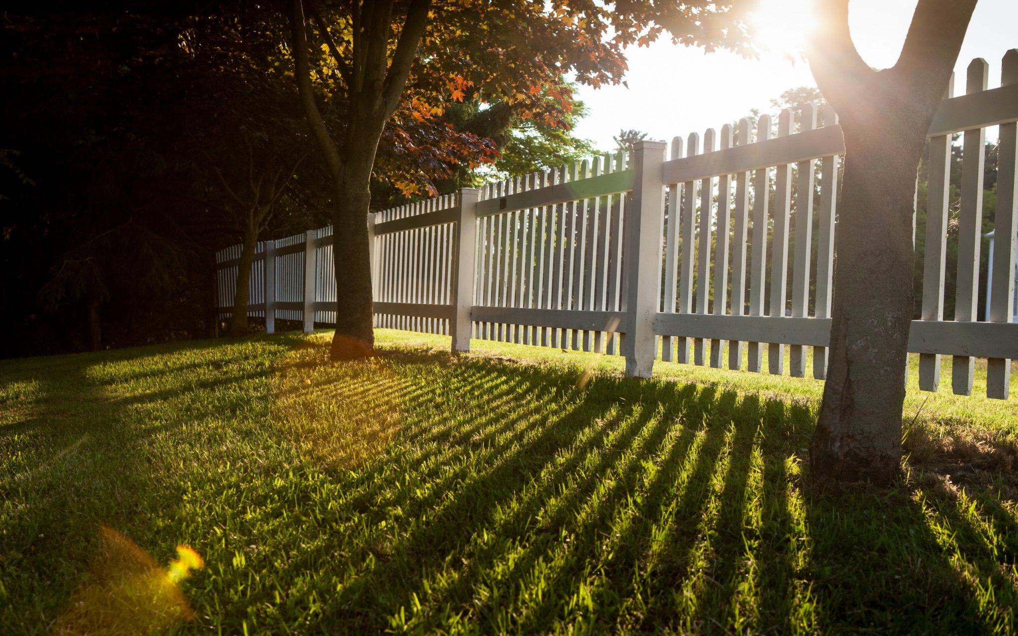 6 mistakes to avoid when building your fence